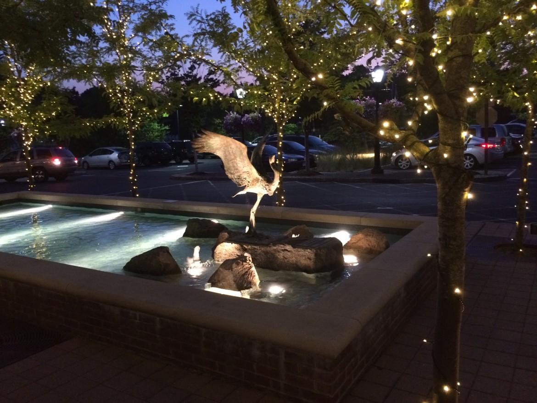 Fountain Darien Library Night