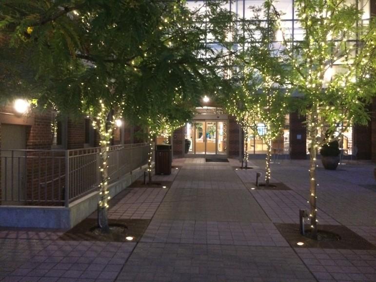 Night Entrance Back Darien Library