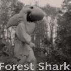Halloween 2015 Forest Shark