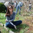 Robin Murphy DCA Gardening 4-10-16