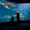 Maritime Aquarium 5-3-16