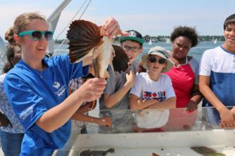 Marine Life Study Cruise Maritime Aquarium 6-5-16