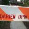 Darien DPW horse Department of Public Works 9-9-16