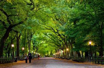 Central Park talk at DCA 03-06-17