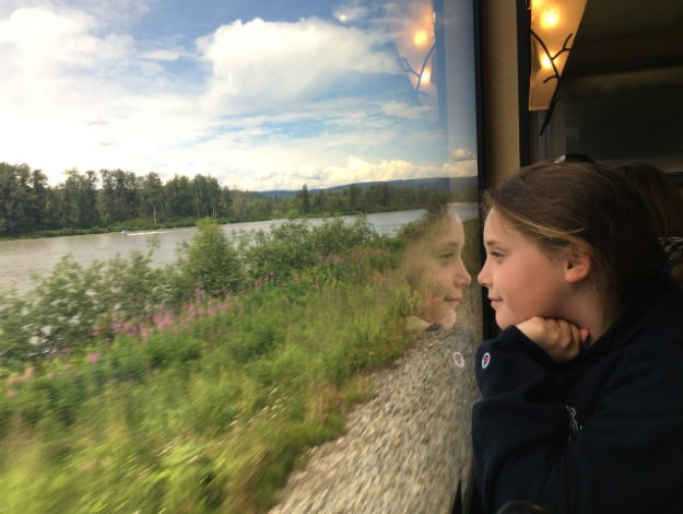 "Winner in the adult category of Travel, ""Girl on a Train"" by Elizabeth Fitzpatrick Pic Darien Smartphone Photo Contest 03-14-17"