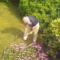 Gardening Garden Gardener 04-01-17 https://commons.wikimedia.org/wiki/File:Gardening.jpg