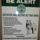 Coyote Sign Waveny Park 04-05-17