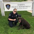 Grizzly Police Dog Leslie DaSilva 04-18-17