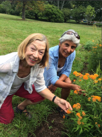 Darien Nature Center gardening classes 08-20-17
