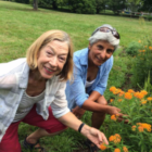 Gardening classes Darien Nature Center 08-20-17