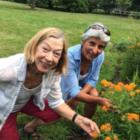 Gardening classes Darien Nature Center 08-20-17
