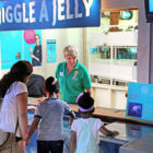 volunteer Maritime Aquarium jiggle a jelly 09-02-17