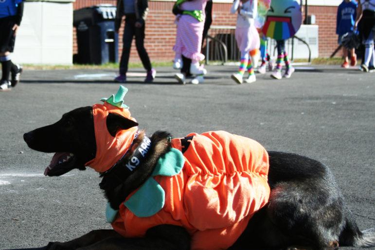 Argo Holmes Halloween Parade 11-20-17