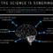 Binge Drinking brain illustration
