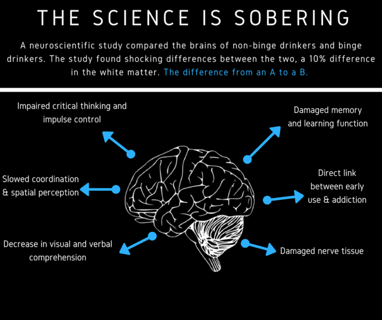 Binge Drinking brain illustration