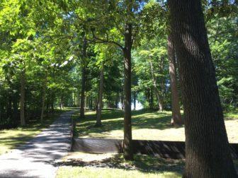 Waveny Park pathway NewCanaanite.com 11-03-17