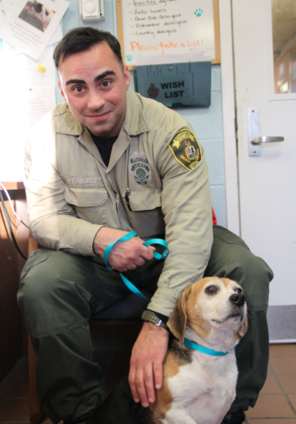 Benny Beagle Stamford Animal Control John Franzetti 12-17-17