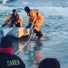 Dog rescue Five Mile River 18-01-10