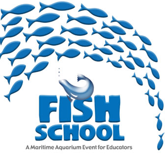 Fish School Maritime Aquarium 2018
