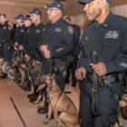 MTA police dogs