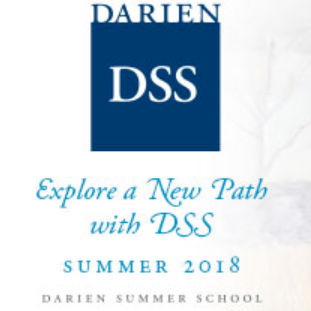 Darien Summer School logo