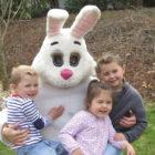 DCA Easter Egg Hunt