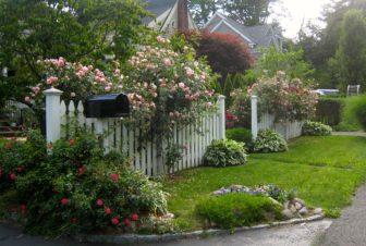 Gardening Real Estate value Diane Farrell