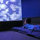 Maritime Aquarium Sleepover Family 2018
