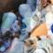 Darien Recycling tip