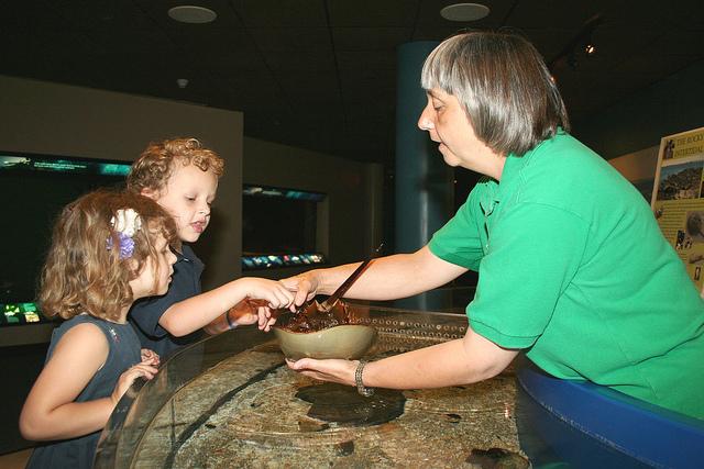 Volunteer Maritime Aquarium