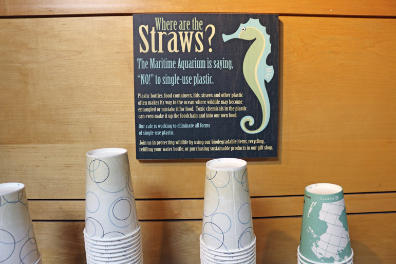No Straws Maritime Aquarium