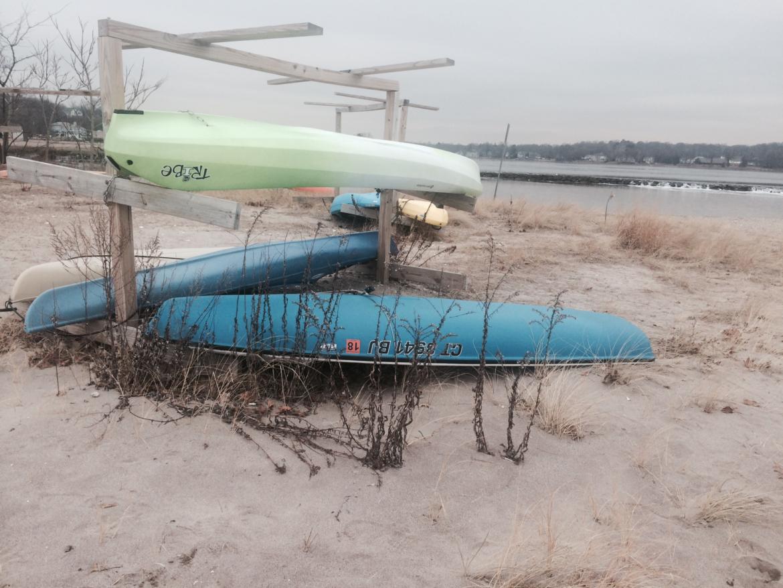 Image -Teal Lime canoes Cove -Nanci Natale May 2018