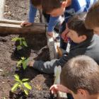 Garden Tokeneke School