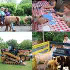 Down on the Farm 2018 Darien Nature Center