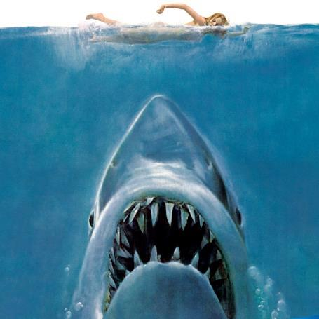 From Jaws promotional material Movie poster part