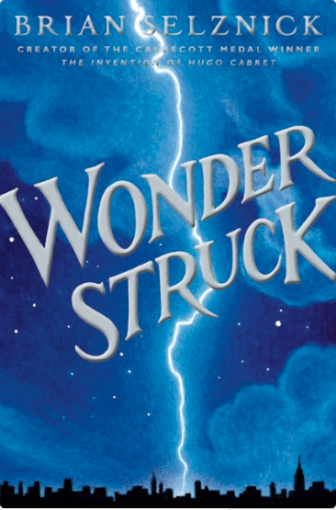 Wonder Struck book cover