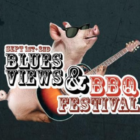 Blues Views and BBQ festival two 2018