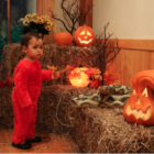 Halloween Hoot n Howl event Darien Nature Center preview for 2018
