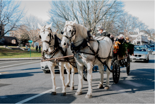 Horse-drawn carriage rides Greenwich Holiday Stroll