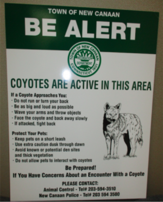 Coyote sign NewCanaanite.com