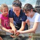 Avalon Bunge Marine Life Encounter Cruise Maritime Aquarium