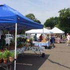 Darien Farmers Market opens 2019