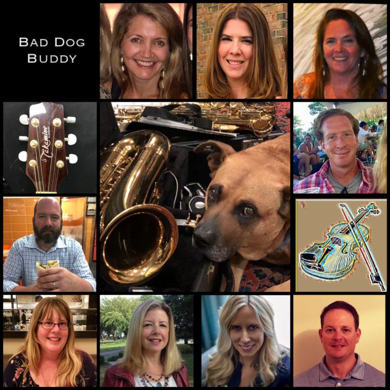 Bad Dog Buddy image