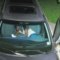 Surveillance video suspected thief in vehicle