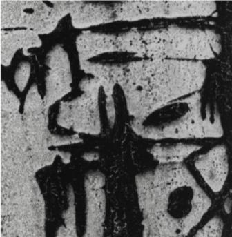 Brett Weston 1969 Untitled (tree bark)