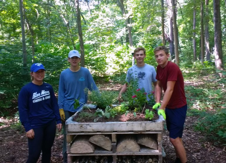 Eagle Scout Project Maximus Racanelli