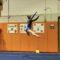 Darien Gymnastics Lucy Collins by Louise Schmidt