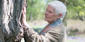 Judi Dench My Passion for Trees