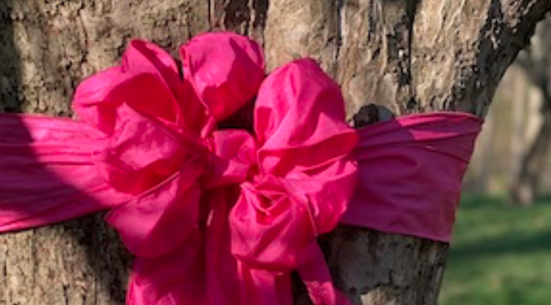 Rose Bow for Heroes wide for facebook