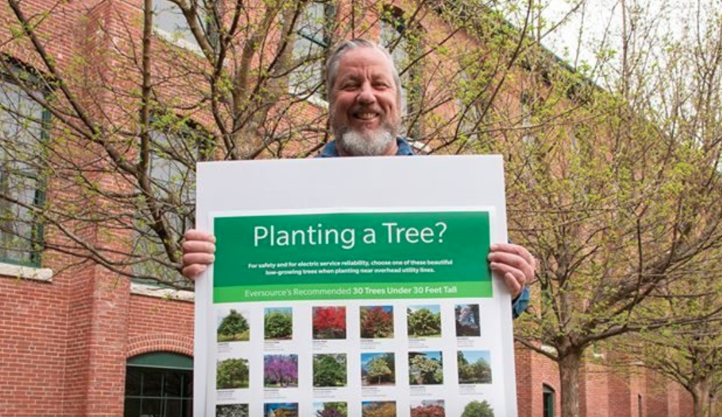 Tree planting recommendations